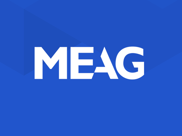 MEAG grid image